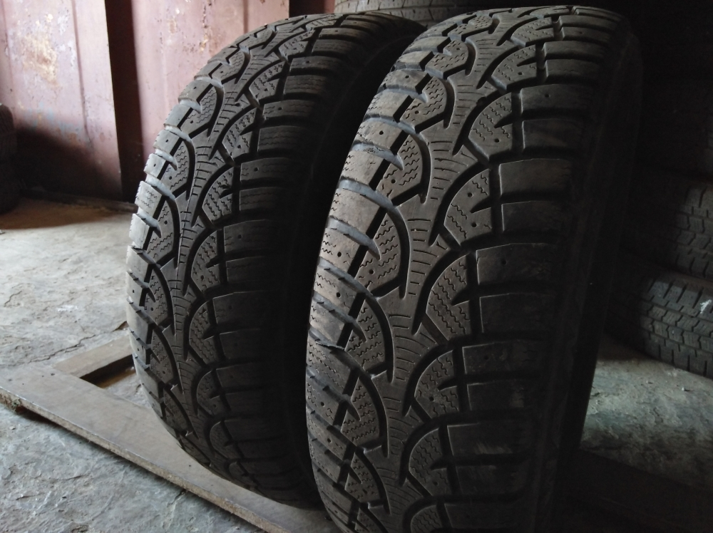 Wanli Winter-Challenger 205/65R 15