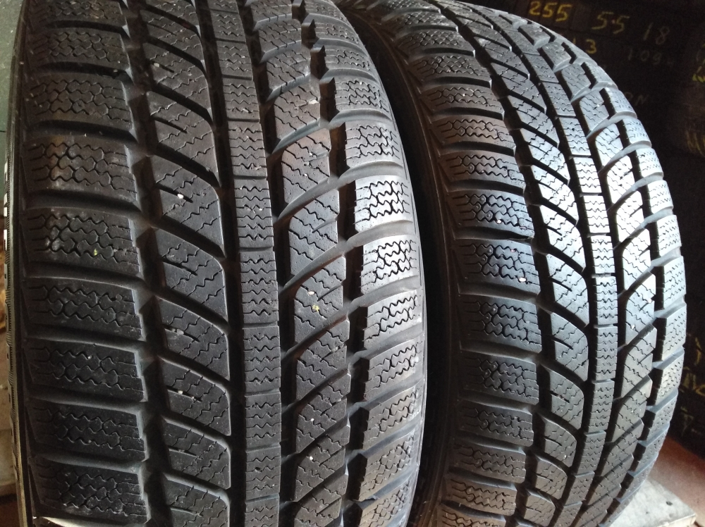 Evergreen Winter EW 62 Radial 205/45R 16