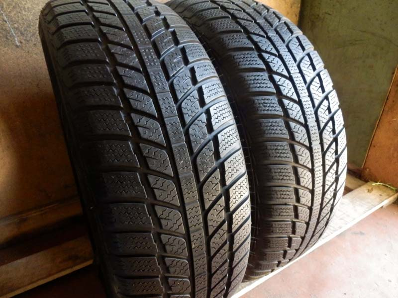 Evergreen Winter EW 62 Radial 205/65R 15