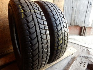 Nankang Snow Winter SW-5 195/70R 15C